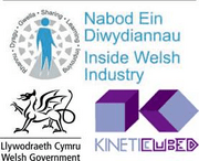 Kinetic Cubed (Programme Organiser for Welsh Government)